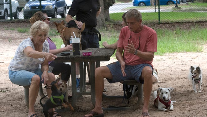 Dog owners and the pets gather the Roger Scott small dog park on Summitt Boulevard on  Monday, June 18, 2018.