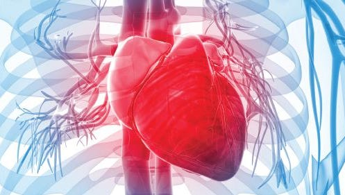 High risk for heart disease? Now what?
