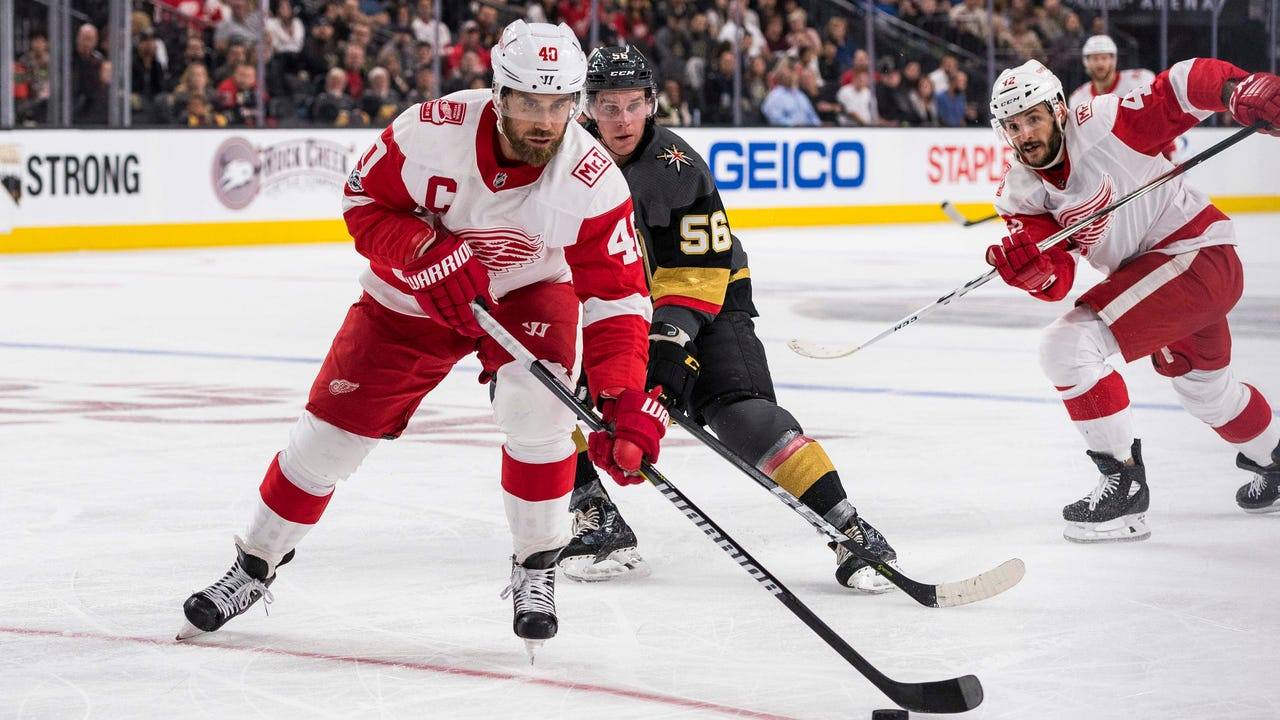 Red Wings on playing hockey in Las Vegas, Oct. 13, 2017.