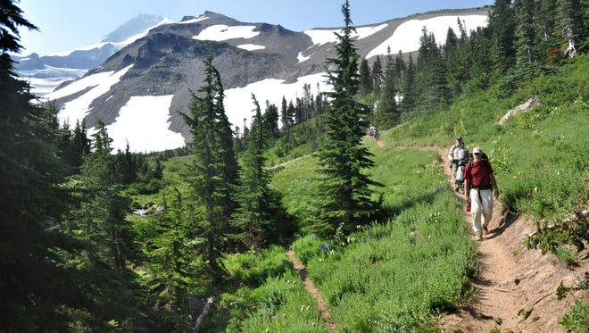 Backpackers hike on the Timberline Trail in Elk Cove, 5 miles from the trailhead at Cloud Cap.