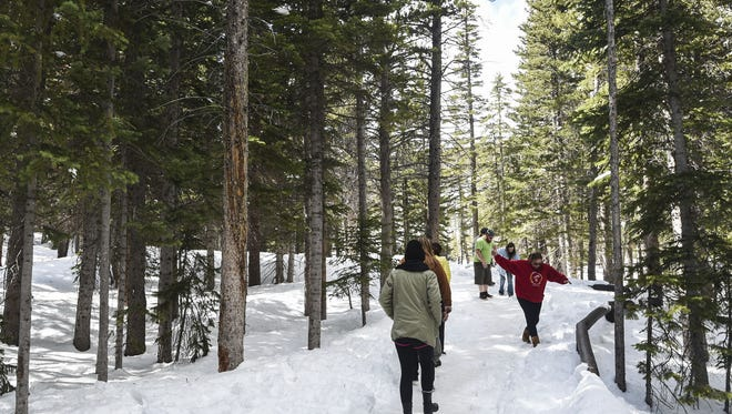 The trek to Bierstadt Lake from the Bear Lake trailhead in Rocky Mountain National Park is shown in this Coloradoan file photo. Two hikers were rescued from the area earlier this week.