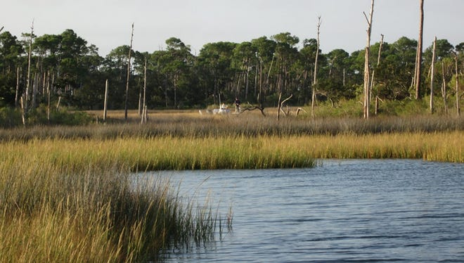 Cat Island's flooded grass has been holding schools of reds in east winds.