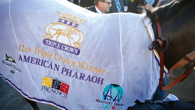 Jun 6, 2015; Elmont, NY, USA; American Pharoah (5) wears a blanket into the winners circle after the 2015 Belmont Stakes at Belmont Park. Mandatory Credit: Winslow Townson-USA TODAY Sports