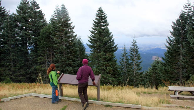 Cindy McCain and Lisa Romano look out on a viewpoint on Marys Peak where a cluster of noble fir trees will be removed next week to help preserve the meadows on Marys Peak.
