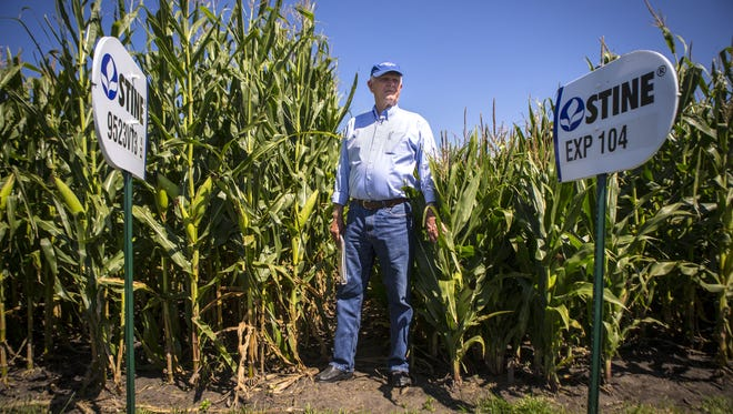 Seed entrepreneur Harry Stine, shown at his Adel demonstration field Aug. 13, 2014.
