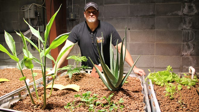 Bill Rajewski Jr. decided last year to open Sho-Me Hydroponics, which supplies everything a gardener needs for organic gardening, indoors or out .