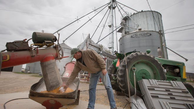 Steve Knollman collects a sample of corn for testing beside storage units during the late harvest at Knollman Farm in Hamilton, Ohio.