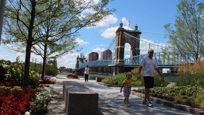 The Roebling Bridge in Cincinnati, Ohio, provides a picturesque backdrop for the city's riverside park.