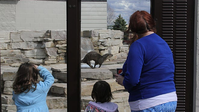 The Menominee Park Zoo opening in May 2014 brought this family out to enjoy the antics of the otters. This year the zoo opens Saturday, May 7.