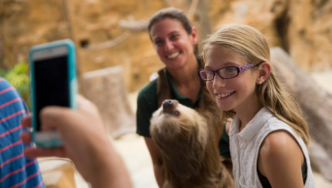 Elle Simpson, 11, a zoo visitor from New Jersey, smiles as she poses with Molly, a two-toed sloth, after the conclusion of the Safari Canyon Feature Show at the Naples Zoo Thursday, July 7, 2016 in Naples, Fla. (Luke Franke/Naples Daily News)