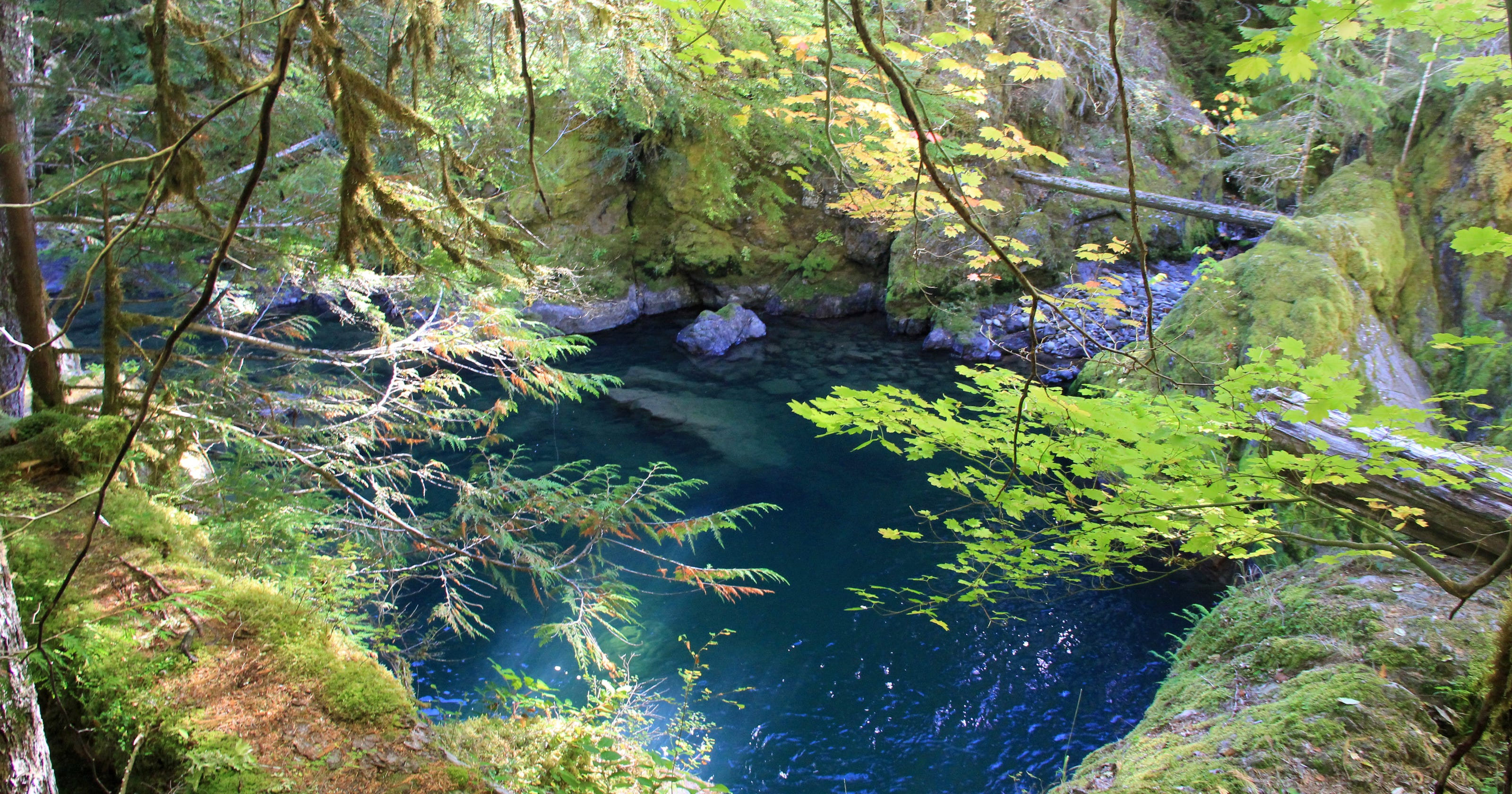 13 Less Crowded Swimming Holes Near Salem