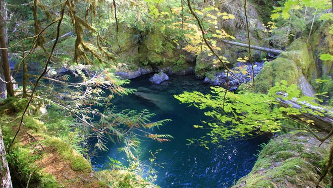 A swimming hole is found on the Middle Santiam River near Shed Creek on the border of the Middle Santiam Wilderness.