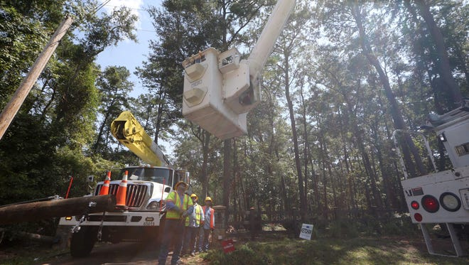 A 10-man mutual aid team of linesman from Lafayette, LA works on Ox Bottom Road to replace an electric pole and power lines which services just one customer on Friday. With only a few hundred customers remaining without power a week after Hurricane Hermine, utility workers are down to individual customer cases of power loss.