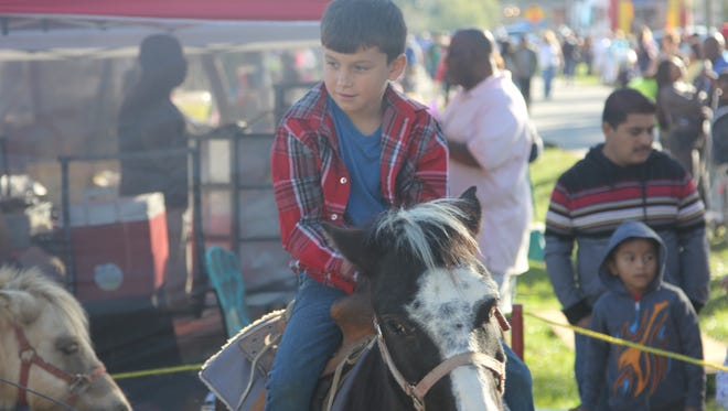 Kids got the chance to ride mules at Calvary, Georgia's 44th Annual Mule Day.