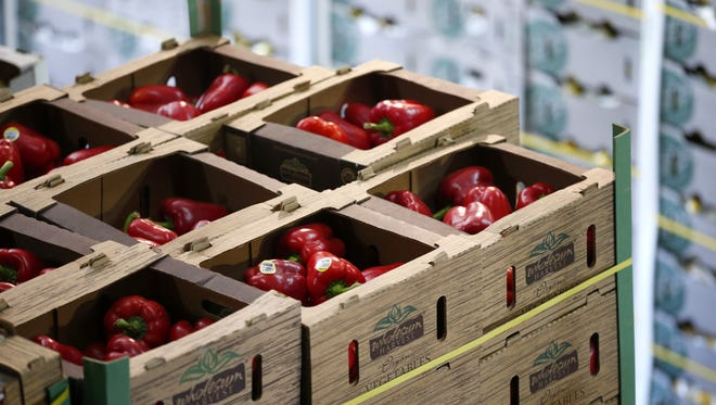 Borderlands Food Bank in Nogales, Arizona warehouse is filled with rescued fresh produce. Most of the time the reason the produce won't sell is because of cosmetic damages such as rain stains and discoloration.