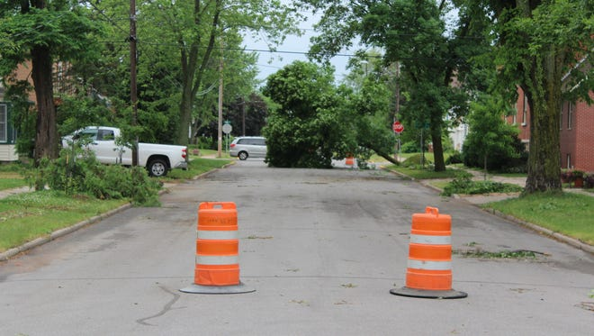 A large tree uprooted in a storm blocks Wyatt Avenue in Stevens Point on Tuesday morning.