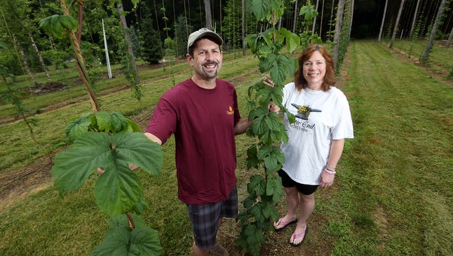 Jeff and Daryl Martin, owners of Bitter End Hops, a hops farm in Randolph helping local brewers. June 16, 2017, Randolph, NJ.