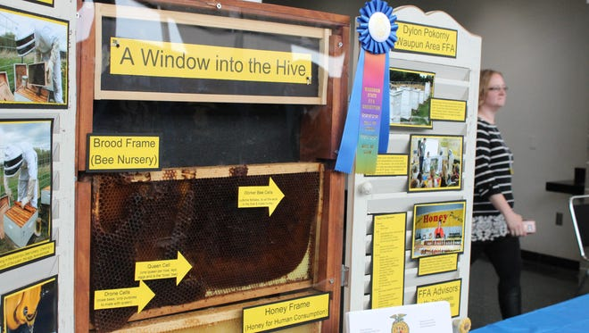 A supervised agricultural experience project on raising honey bees.