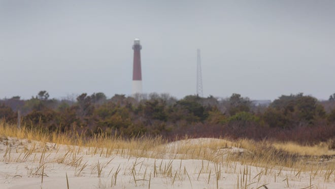 Shaped by storms and tides, Island Beach State Park is a narrow barrier island stretching for 10 miles between the Atlantic Ocean and the Barnegat Bay.
