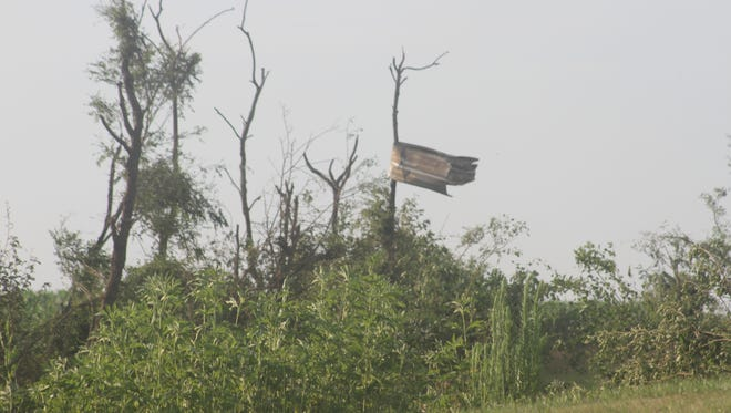Metal was wrapped around a tree on the Dennis Schulte property east of Conroy, in the aftermath of a surprise tornado Tuesday afternoon, July 11.