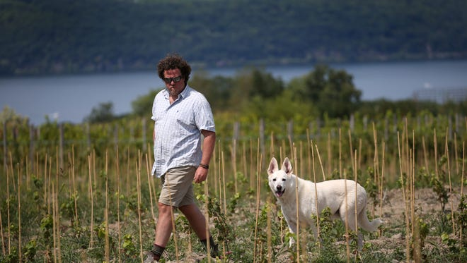 Richard Rainey, General Manager of Forge Cellars, walk with his dog Ajax through a newly planted vineyard of Pinot Noir in 2017.