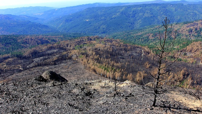 Views of the Chetco Bar Fire, which burned in southwest Oregon during the summer of 2017.