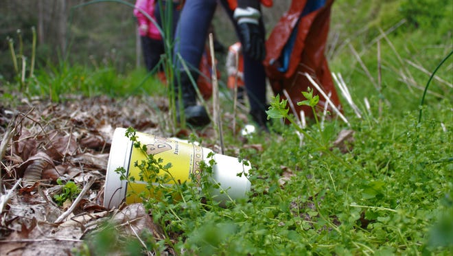 Litter is a never-ending problems in WNC, costing taxpayers about $2 million in N.C. DOT cleanups in 2017 alone.