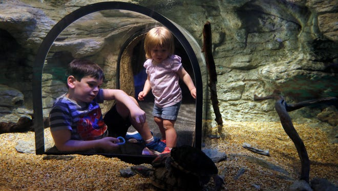 Julia, 2, and Nicolas Adams, 10, of Harrison, play in an aquatic animal display in The Woods the newly remodeled children's museum inside the Cincinnati Museum Center in Cincinnati on Friday, May 4, 2018.
