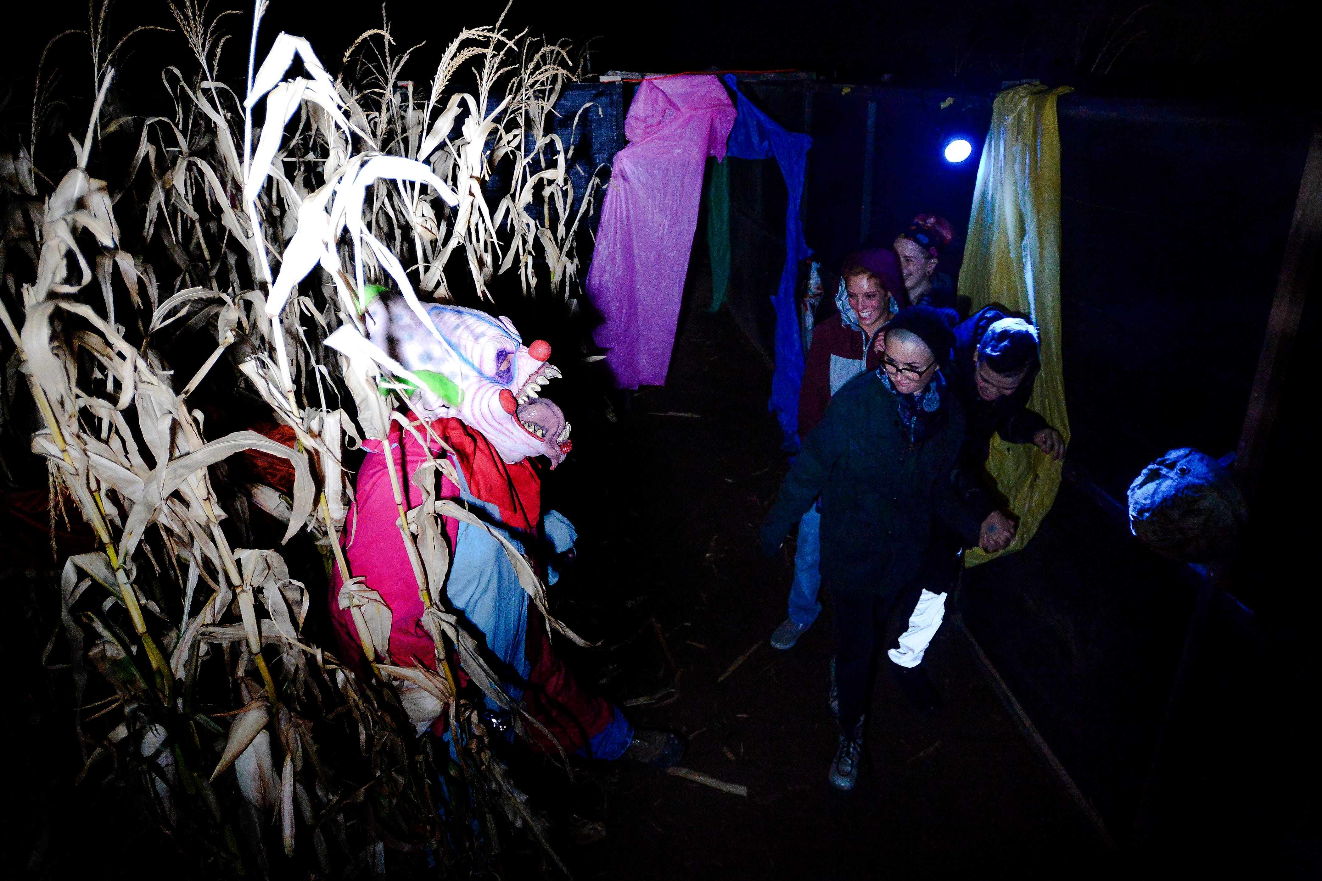 Haunted corn maze in fort collins
