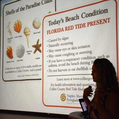 Red tide causing fish kills, breathing trouble at some Collier, Lee beaches