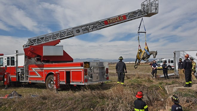Windsor Severance Fire Rescue performs horse rescue training in this file photo.
