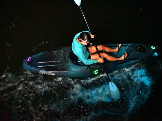 Genevieve Ballard, owner of Cocoa Kayaking takes a group out in the Thousand Islands off of Cocoa Beach in the Banana river for a nighttime bioluminescence tour.  Bioluminescence usually is created by a species of algae called Pyrodinium bahamense. that emit light at night via chemical reaction when disturbed. These photos were not enhanced.