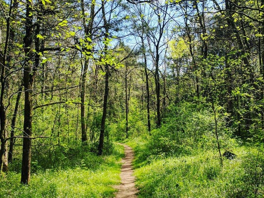 There are eight miles of peaceful trails weaving through