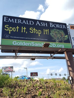 A billboard on Grand Avenue in Wausau brings attention to the anticipated arrival of the invasive Emerald Ash Borer beetles, shown here on Aug. 1, 2016.
