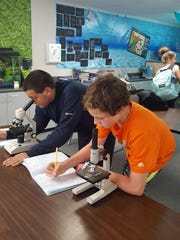 Two students observe plankton under microscopes in Denise Hardoy's science classroom.