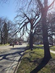 A Howell firefighter walks Grand River Avenue near