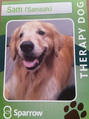 A therapy dog trading card, issued in 2016 by Sparrow