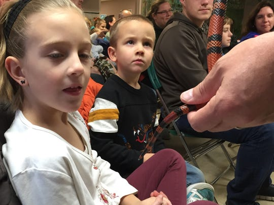 Avery Whitenight, 6, checks out a Honduran milk snake as her brother Garret, 4, looks on.