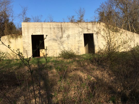 This was once the underground residence for elephants kept on a sanctuary farm in Fordland. The vacant property is for sale and an offer has been made.