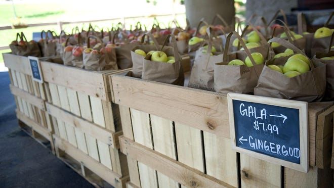 Jeter Mountain Farm offers several varieties of pre-picked apples just outside its new hard cider taproom on Sunday during the second day of its grand opening weekend for both the Jeter Mountain Farm Hard Cider Taproom and the kickoff of its first-ever u-pick apple season open to the public.