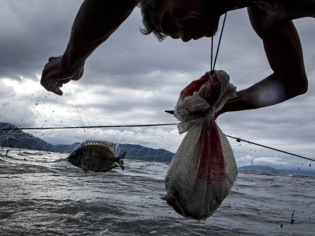 A fisherman clears his catch in Banda Aceh, Indonesia on Dec. 26. A tsunami ten years ago killed nearly a quarter of a million people in 14 countries.
