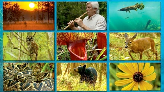 """Sammy Tedder's nature film is called """"Local Waters - Wild Places."""""""