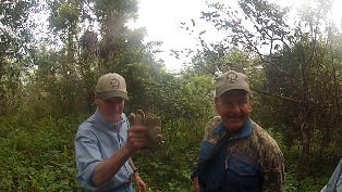 Sen. Bill Nelson, left, and Florida Wildlife Conservation Commissioner Ron Bergeron on their python hunt in the Florida Everglades.