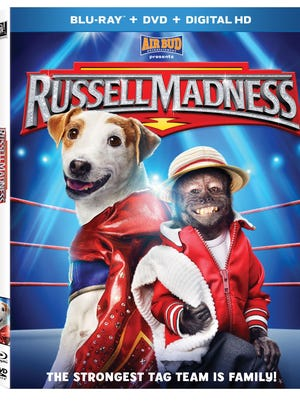 """""""Russell Madness"""" is now available on DVD and Blu-ray."""