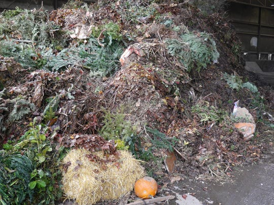 Yard debris and food waste is sorted and sent to the Pacific Region Composting Facility near Corvallis to be converted into compost.
