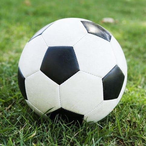 WLA girls soccer shuts out Springs