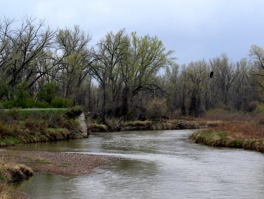 View of the Tongue River from the Tongue River Road, just north of Brandenberg. The body of a middle-aged man was found in the river on the Crow Reservation on Thursday, according to authorities.