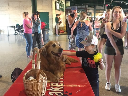 Jake The Diamond Dog at the Fort Wayne TinCaps game
