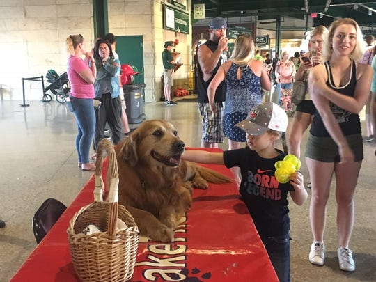 Jake The Diamond Dog at the Fort Wayne TinCaps game on July 8, 2017.