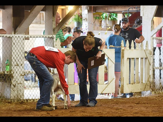 Chris Tooms shows a goat during the showman of showmen competition at the Muskingum County Fair. Tooms was showmanship winner for goats.